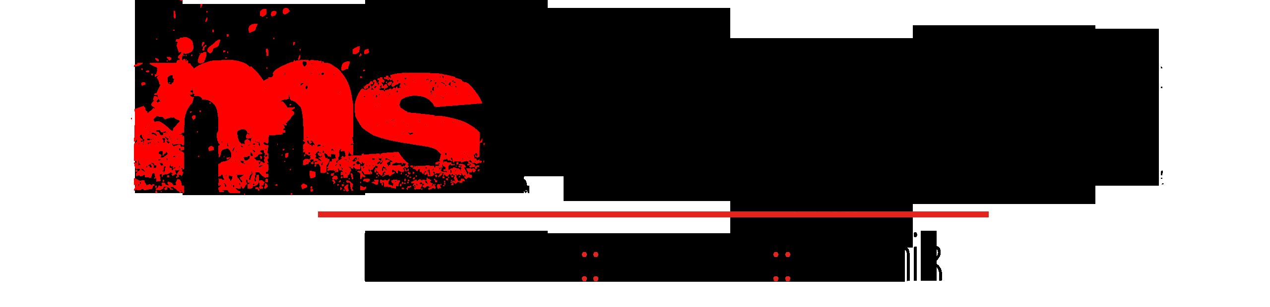 MS logo2019 RWB